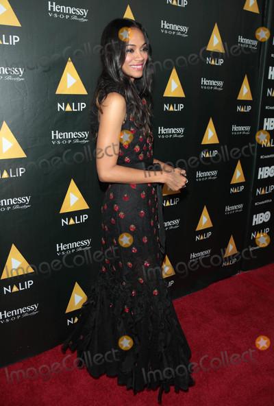 Photo - Photo by gotpapstarmaxinccomSTAR MAX2017ALL RIGHTS RESERVEDTelephoneFax (212) 995-119662417Zoe Saldana at The NALIP 2017 Latino Media Awards in Hollywood CA