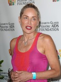 Elizabeth Glaser Photo - 3 June April 2012 - Los Angeles California - Sharon Stone Elizabeth Glaser Pediatric AIDS Foundations 23rd Annual A Time For Heroes Celebrity Picnic Held at The Wadsworth Theater Photo Credit Faye SadouAdMedia