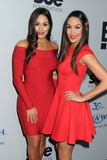 The Bella Twins Photo 1