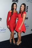 The Bella Twins Photo 1