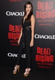 Kim Novak Photo - 11 March 2015 - Los Angeles California - Meghan Ory  Arrivals for Crackles world premiere original feature film Dead Rising Watchtower held at the Kim Novak Theater at Sony Pictures Studios Photo Credit Birdie ThompsonAdMedia