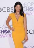 Andrea Navedo Photo - 18 January 2017 - Los Angeles California - Andrea Navedo 2017 Peoples Choice Awards held at the Microsoft Theater Photo Credit Birdie ThompsonAdMedia
