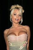Jesse Jane Photo - Jesse Jane at the Premiere of Digital Playgrounds Pirates Egyptian Theater Hollywood CA 09-12-05