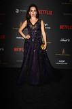 Ana De la reguera Photo - Ana de la Regueraat The Weinstein Company  Netflix 2016 Golden Globe After Party Beverly Hilton Beverly Hills CA 01-10-16