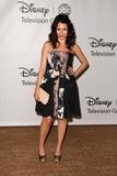 Alexandra Krosney Photo - Alexandra Krosneyat the Disney ABC Summer Press Tour Beverly Hilton Beverly Hills CA 08-07-11
