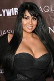 Somaya Reece Photo - Somaya Reece at Claudia Jordans 35th Birthday Bash Boulevard3 Hollywood CA 04-13-08