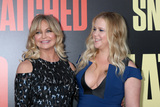 Amy Schumer Photo - LOS ANGELES - MAY 10  Goldie Hawn Amy Schumer at the Snatched World Premiere at the Village Theater on May 10 2017 in Westwood CA