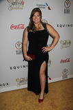 Amanda Bingson Photo - Amanda Bingson 02212015 The 3rd Annual Gold Meets Golden held at Equinox Sports Club in West Los Angeles CA 90025 Photo by Izumi Hasegawa  HollywoodNewsWirenet