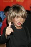 Tina Turner Photo 1