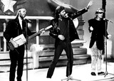 The Bee GEES Photo 1