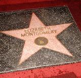 Elizabeth Montgomery Photo 1