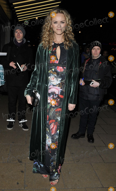 Anna-Louise Plowman Photo - LONDON ENGLAND - JANUARY 27 Anna Louise Plowman attends the Private Lives London film premiere Cineworld Haymarket Haymarket on Monday January 27 2014 in London England UKCAPCANCan NguyenCapital Picturesface to face- Germany Austria Switzerland and USA rights only -