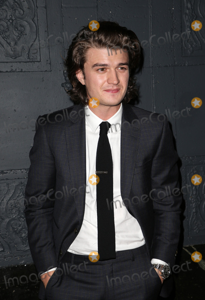 Photo - 17 November 2017 -  Los Angeles California - Joe Keery Premiere Of IFC Films The Tribes Of Palos Verdes held at The Theatre at Ace Hotel Photo Credit Faye SadouAdMedia