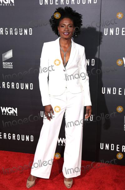 Photo - Underground Los Angeles Premiere
