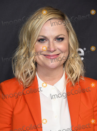 Photos From 2019 PaleyFest LA - NBC's 'Parks and Recreation' 10th Anniversary Reunion