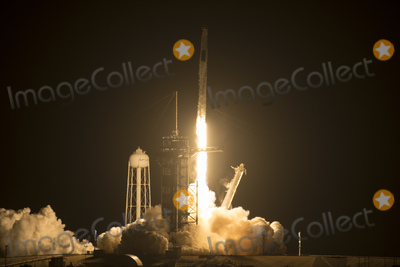 Photo - SpaceX Crew-2 Launch