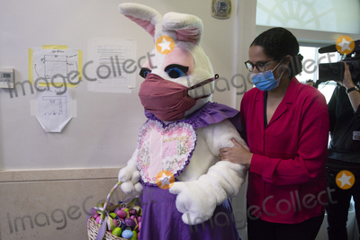 Photo - Easter bunny at the White House