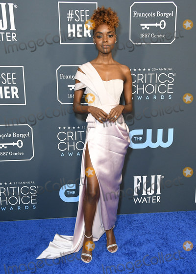 Ashley Murray Photo - 12 January 2020 - Santa Monica California - Ashley Murray 25th Annual Criticis Choice Awards - Arrivals held at Barker Hangar Photo Credit Birdie ThompsonAdMedia