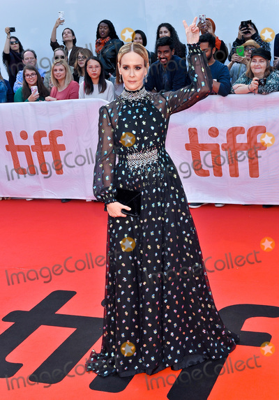 Photos From 'The Goldfinch' Premiere - 2019 Toronto International Film Festival