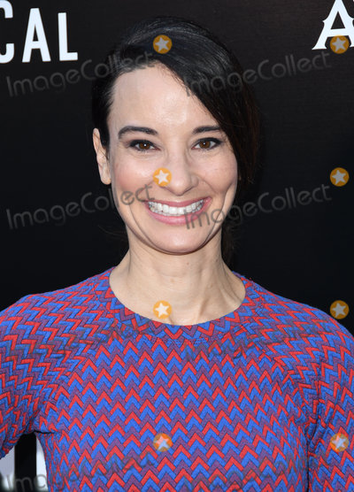 Alison Becker Photo - 23 May 2018 - Hollywood California - Alison Becker In Darkness Los Angeles Angeles Premiere held at ArcLight Hollywood  Photo Credit Birdie ThompsonAdMedia