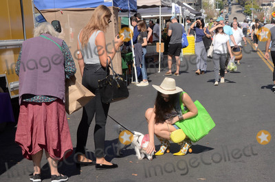 Photos From Natasha Blasick spotted shopping at the Hollywood Farmers Market