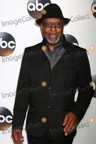 Photo - LOS ANGELES - JAN 15  James Pickens Jr at the 2018 NAACP Image Awards at Convention Center on January 15 2018 in Pasadena CA