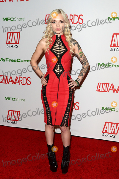 Photo - 2020 AVN (Adult Video News) Awards