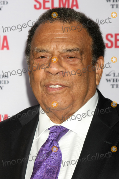 Andrew Young Photo - SANTA BARBARA - DEC 6  Andrew Young at the Selma  Legends Who Paved the Way Gala at the Bacara Resort  Spa on December 6 2014 in Goleta CA