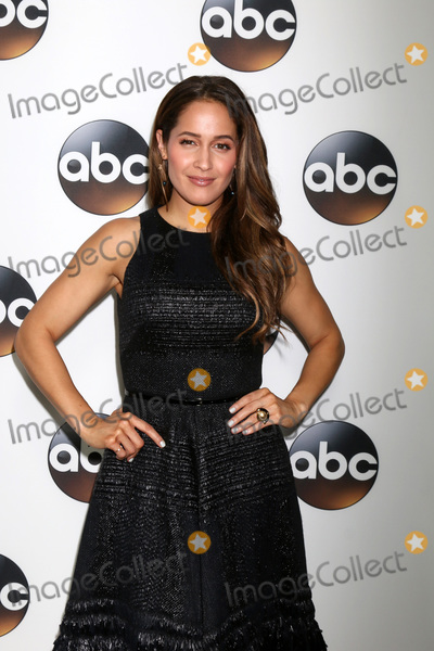 Photo - LOS ANGELES - JAN 15  Jaina Lee Ortiz at the 2018 NAACP Image Awards at Convention Center on January 15 2018 in Pasadena CA
