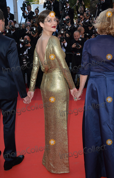 Photo - From the Land of the Moon Premiere - Cannes Film Festival 2016