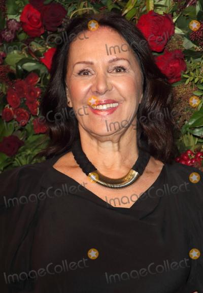 Arlene Phillip Photo - London UK Arlene Phillips  at the 65th Evening Standard Theatre Awards London Coliseum London England on the 24th  November 2019Ref LMK73-S2621-251119Keith MayhewLandmark MediaWWWLMKMEDIACOM