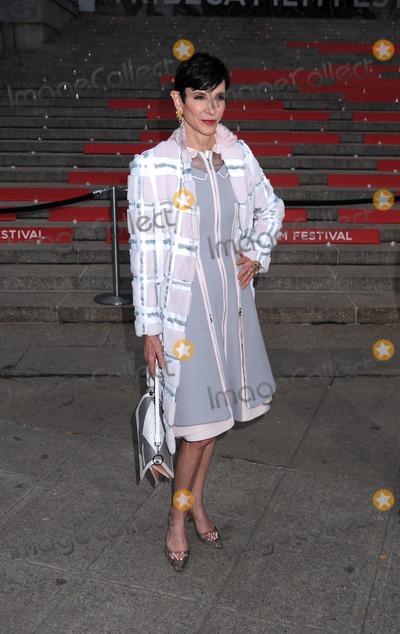 Amy Fine Collins Photo - New YorkNYUSA Amy Fine Collins   at the 2015 Tribeca Film Festival - Vanity Fair Party New York State Supreme Court  14th April 2015 Ref       LMK340-50951CVAL-150415     Carmen ValdesLandmark Media WWWLMKMEDIACOM