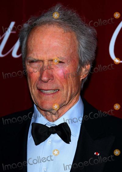 Photo - 2010 Palm Springs International Film Festival Awards Gala