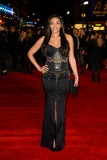 Amal Fashanu Photo - LONDON ENGLAND - JANUARY 20 Amal Fashanu attends The European Premiere of Jack Ryan Shadow Recruit at Vue Cinema Leicester Square on January 20 2014 in London England Credit Capital Pictures face to face- Germany Austria Switzerland and USA rights only -
