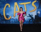Ana Ivanovi Photo - 16 December 2019 - New York New York - Ana Villafane at the World Premiere of CATS at Alice Tully Hall in Lincoln Center Photo Credit LJ FotosAdMedia