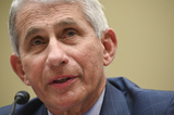 The National Photo - Anthony Fauci director of the National Institute of Allergy and Infectious Diseases speaks during a House Select Subcommittee on the Coronavirus Crisis hearing in Washington DC US on Friday July 31 2020 Trump administration officials are set to defend the federal governments response to the coronavirus crisis at the hearing hosted by a House panel calling for a national plan to contain the virus Credit Erin Scott  Pool via CNPAdMedia