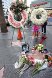 Debbie Reynolds Photo - 31 December 2016 - Hollywood California - Debbie Reynolds Star Debbie Reynolds Remembered On The Hollywood Walk Of Fame Photo Credit F SadouAdMedia