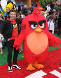 Angry Birds Photo 1