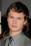 Ansel Elgort Photo - 18 March 2014 - Westwood California - Ansel Elgort Divergent Los Angeles Premiere held at The Regency Bruin Theatre Photo Credit Byron PurvisAdMedia