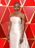 Danai Gurira Photo - 04 March 2018 - Hollywood California - Danai Gurira 90th Annual Academy Awards presented by the Academy of Motion Picture Arts and Sciences held at the Dolby Theatre Photo Credit AdMedia