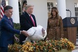 The National Photo - United States President Donald J Trump and first lady Melania Trump present Butter the National Thanksgiving Turkey in the Rose Garden of the White House in Washington DC on Tuesday November 26 2019 Credit Chris Kleponis  Pool via CNPAdMedia