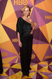 Anne Heche Photo - Anne Hecheat the HBO Golden Globes After Party Beverly Hilton Beverly Hills CA 01-07-18