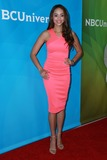 Amber West Photo - Amber Westat the NBC Universal Summer Press Day Langham Hotel Pasadena CA 04-02-15