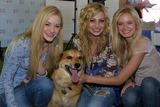 Alyson Aly Michalka Photo - Amanda (AJ) Michalka Alyson (Aly) Michalka and Sara Paxtonat the Nuts For Mutts Dog Show Pierce College Woodland Hills CA 04-30-06