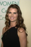Brooke Shields Photo 1