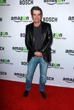 Alan Rosenberg Photo - Alan Rosenbergat the Bosch Amazon Red Carpet Premiere Screening Cinerama Dome Hollywood CA 02-03-15