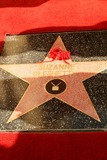 Suzanne Pleshette Photo - Star of Suzanne Pleshette at the Ceremony Posthumously Honoring Suzanne Pleshette with a star on the Hollywood Walk of Fame Hollywood Boulevard Hollywood CA 01-31-08