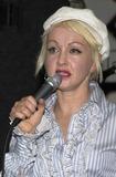 Cyndi Lauper Photo 1