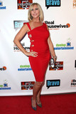 David Edwards Photo - Vicki Gunvalson at The Real Housewives of Orange County Premiere Party  Los Angeles CA on February 20 2013 (Photo by David Edwards)
