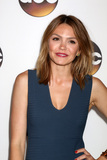 Aimee Teegarden Photo - LOS ANGELES - AUG 4  Aimee Teegarden at the ABC TCA Summer 2016 Party at the Beverly Hilton Hotel on August 4 2016 in Beverly Hills CA